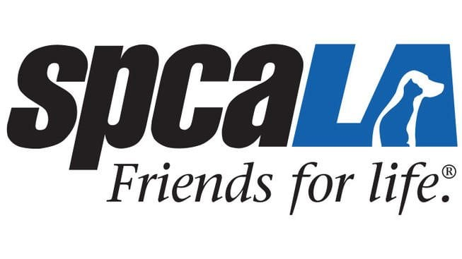 SPCA LA local car show partner